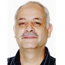 محمود حربي