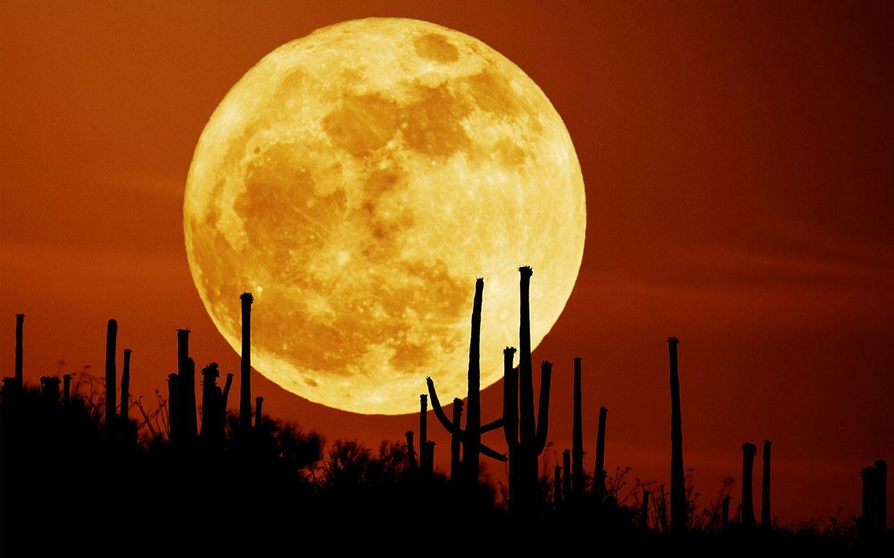 فرصة نادرة لرؤية.. قمر العشاق