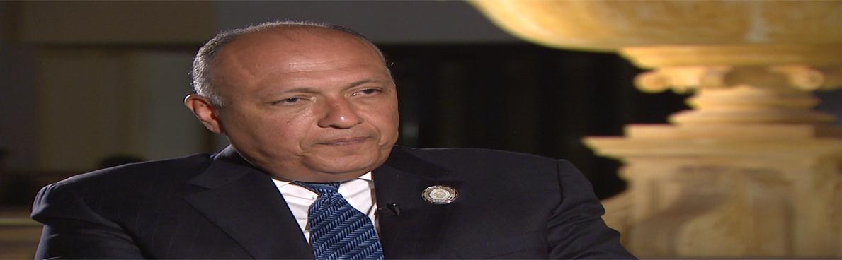 شكري: مصر ستدافع عن أمنها بكل الوسائل المتاحة