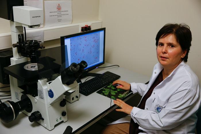 «دراسة» تكشف علاقة المضادات الحيوية بعلاج السرطان