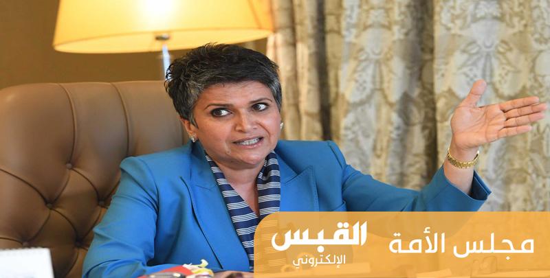 صفاء الهاشم عن التأمين الصحي للوافدين: «هالديرة لو بير نشف»