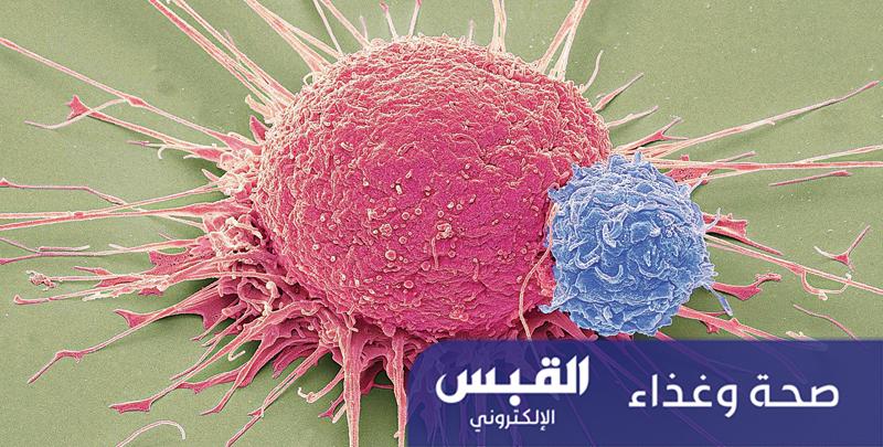 تصميم بكتيريا قاتلة للسرطان