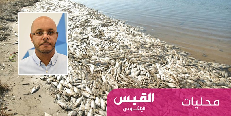 الزيدان لـ«القبس الإلكتروني»: مجرور الغزالي وراء نفوق أسماك