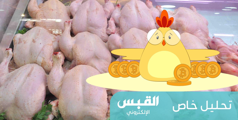 أسعار الدجاج سترتفع.. كيف ولماذا؟